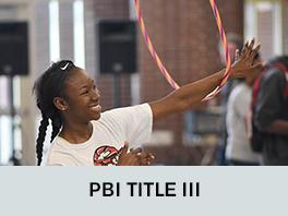 PBI TITLE 3
